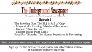 Underground Newspaper: Episode 2 - The BLS is Full of Crap / Population is Decreasing