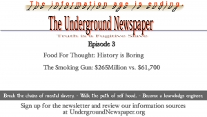 Underground Newspaper: Episode 3 - History is Boring / You Are Not A Single Pixel